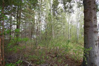 Photo 4: 3 3016 TWP 572 Road: Rural Lac Ste. Anne County Rural Land/Vacant Lot for sale : MLS®# E4247407