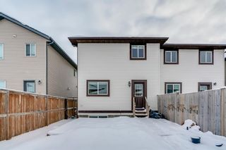 Photo 37: 65 Skyview Point Green NE in Calgary: Skyview Ranch Semi Detached for sale : MLS®# A1070707