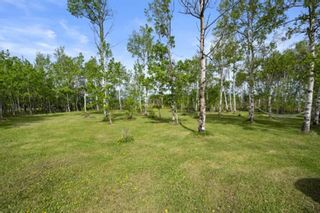 Photo 4: 31101 RR25: Rural Mountain View County Detached for sale : MLS®# A1114375
