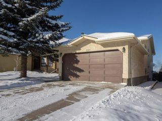 Photo 39: 237 Shawfield Road SW in Calgary: Shawnessy Detached for sale : MLS®# A1069121