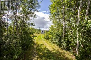 Photo 5: 565 Immigrant RD in Cape Tormentine: Vacant Land for sale : MLS®# M137540