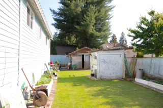 Photo 7: 810 COTTONWOOD Avenue in Coquitlam: Coquitlam West House for sale : MLS®# R2073509