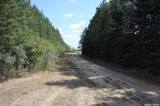 Photo 6: Janzen Acreage in Corman Park: Residential for sale (Corman Park Rm No. 344)  : MLS®# SK867158