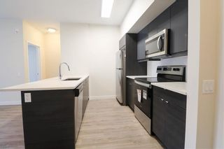 Photo 4: 203 50 Philip Lee Drive in Winnipeg: Crocus Meadows Condominium for sale (3K)  : MLS®# 202114301