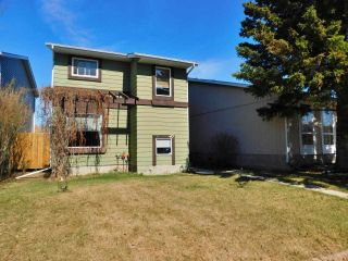 Photo 36: 40 Birch Drive: Gibbons House for sale : MLS®# E4239751