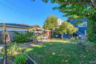 """Photo 25: 3825 W 19TH Avenue in Vancouver: Dunbar House for sale in """"Dunbar"""" (Vancouver West)  : MLS®# R2495475"""