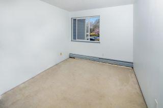 "Photo 14: 229 3451 SPRINGFIELD Drive in Richmond: Steveston North Condo for sale in ""Admiral Court"" : MLS®# R2572965"