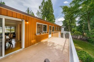 """Photo 18: 284 HARVARD Drive in Port Moody: College Park PM House for sale in """"COLLEGE PARK"""" : MLS®# R2385281"""