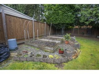 Photo 30: 838 DUNDONALD Drive in Port Moody: Glenayre House for sale : MLS®# R2554927