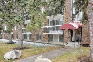 Photo 19: 107 110 24 Avenue SW in Calgary: Mission Apartment for sale : MLS®# A1098255