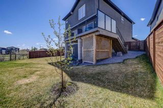 Photo 49: 77 Walden Close SE in Calgary: Walden Detached for sale : MLS®# A1106981