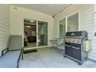 Photo 34: 8 11355 COTTONWOOD Drive in Maple Ridge: Cottonwood MR Townhouse for sale : MLS®# R2605916