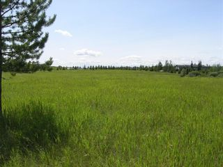 Photo 2: 81230 2378 Drive E: Rural Foothills County Land for sale : MLS®# A1063147