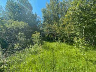 Photo 2: 73 52122 RGE RD 210: Rural Strathcona County Rural Land/Vacant Lot for sale : MLS®# E4252259