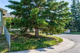 Photo 27: 547 Whiteland Drive NE in Calgary: Whitehorn Semi Detached for sale : MLS®# A1124147