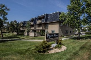 Photo 26: 2308 3115 51 Street SW in Calgary: Glenbrook Apartment for sale : MLS®# A1024636