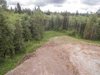"Photo 5: 12230 267 Street in Maple Ridge: Northeast Land for sale in ""MCFADDEN CREEK ESTATES"" : MLS®# R2166047"