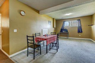 Photo 17: 243 TARACOVE ESTATE Drive NE in Calgary: Taradale Detached for sale : MLS®# C4303627