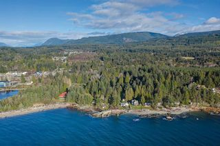 Photo 11: 1551 MCCULLOUGH Road in Sechelt: Sechelt District House for sale (Sunshine Coast)  : MLS®# R2530318