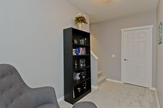 Photo 34: 160 COPPERSTONE Drive SE in Calgary: Copperfield Detached for sale : MLS®# A1016584