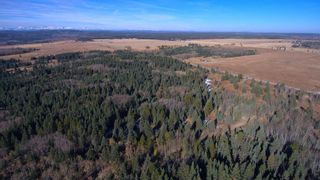 Photo 8: 20.02 Acres +/- NW of Cochrane in Rural Rocky View County: Rural Rocky View MD Land for sale : MLS®# A1065950