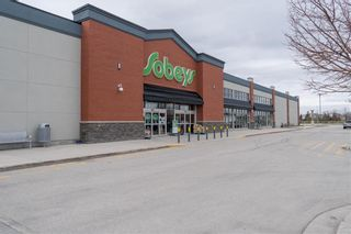 Photo 39: 23 Burning Glass Road in Winnipeg: Sage Creek Residential for sale (2K)  : MLS®# 202110694