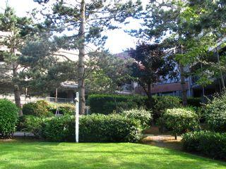 FEATURED LISTING: 307 - 8460 ACKROYD Road Arboretum