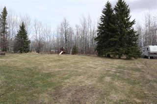 Photo 35: 4502 22 Street: Rural Wetaskiwin County House for sale : MLS®# E4241522