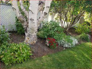 Photo 46: 711 47 Avenue SW in Calgary: Elboya Detached for sale : MLS®# A1081266