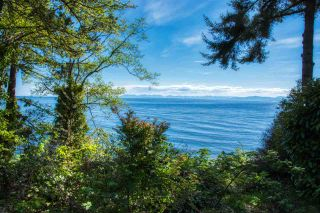 Photo 17: 2471 LOWER Road: Roberts Creek House for sale (Sunshine Coast)  : MLS®# R2366048