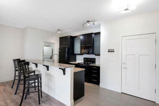 Photo 6: 613 3410 20 Street SW in Calgary: South Calgary Apartment for sale : MLS®# A1127573
