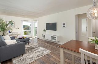 Photo 4: PACIFIC BEACH Condo for sale : 1 bedrooms : 4730 Noyes St #104 in San Diego