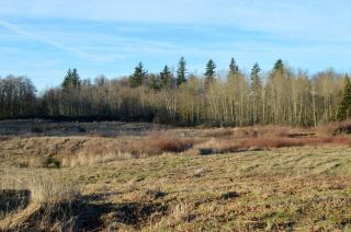 Photo 2: 30169 MARSHALL ROAD in Abbotsford: Abbotsford West Land for sale : MLS®# R2000064