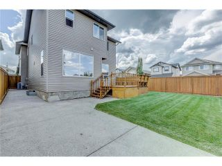 Photo 38: 172 EVERWOODS Green SW in Calgary: Evergreen House for sale : MLS®# C4073885
