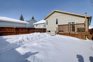 Photo 48: 119 Shawinigan Drive SW in Calgary: Shawnessy Detached for sale : MLS®# A1068163