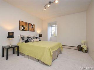 Photo 11: 303 1680 Poplar Ave in VICTORIA: SE Mt Tolmie Condo for sale (Saanich East)  : MLS®# 716765