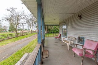 Photo 34: 3294 LEFEUVRE Road: House for sale in Abbotsford: MLS®# R2561237