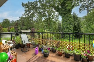 Photo 10: 3353 Salsbury Way in : SE Maplewood House for sale (Saanich East)  : MLS®# 877925