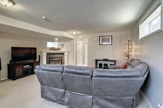 Photo 31: 67 Tarington Place NE in Calgary: Taradale Detached for sale : MLS®# A1146117