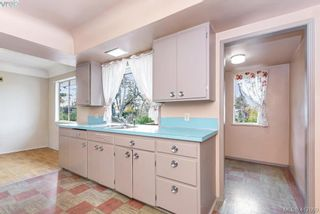 Photo 31: 3630 Kathleen St in VICTORIA: SE Maplewood House for sale (Saanich East)  : MLS®# 828620