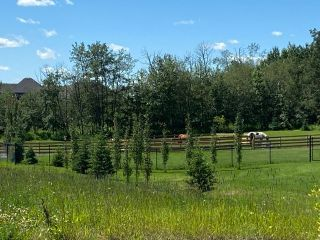 Photo 3: 490 50450 Range Road 234: Rural Leduc County Rural Land/Vacant Lot for sale : MLS®# E4208603