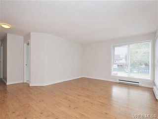 Photo 5: 303 2647 Graham St in VICTORIA: Vi Hillside Condo for sale (Victoria)  : MLS®# 698000