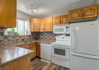 Photo 5: 31 Penworth Place SE in Calgary: Penbrooke Meadows Detached for sale : MLS®# A1120647
