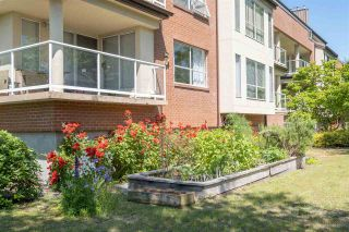 """Photo 24: 113 8300 BENNETT Road in Richmond: Brighouse South Condo for sale in """"Maple Court"""" : MLS®# R2614118"""