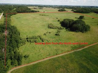 Photo 8: 51213 Rge Road 260: Rural Parkland County Rural Land/Vacant Lot for sale : MLS®# E4251252