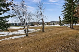 Photo 43: 10971 Valley Springs Road NW in Calgary: Valley Ridge Detached for sale : MLS®# A1081061