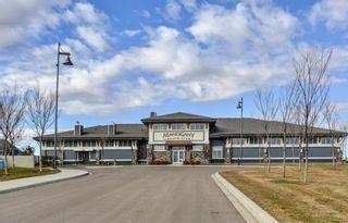 Photo 45: 301 30 Mahogany Mews SE in Calgary: Mahogany Apartment for sale : MLS®# A1094376