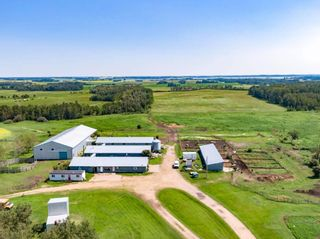 Photo 4: 461017A RR 262: Rural Wetaskiwin County House for sale : MLS®# E4255011
