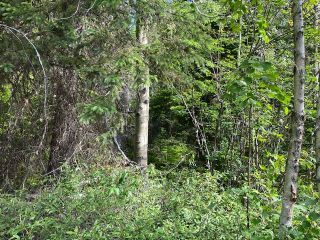"Photo 3: LOT 6 CHIEF LAKE Road in Prince George: Nukko Lake Land for sale in ""CHIEF LAKE"" (PG Rural North (Zone 76))  : MLS®# R2464872"