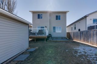 Photo 33: 227 Silver Springs Way NW: Airdrie Detached for sale : MLS®# A1083997